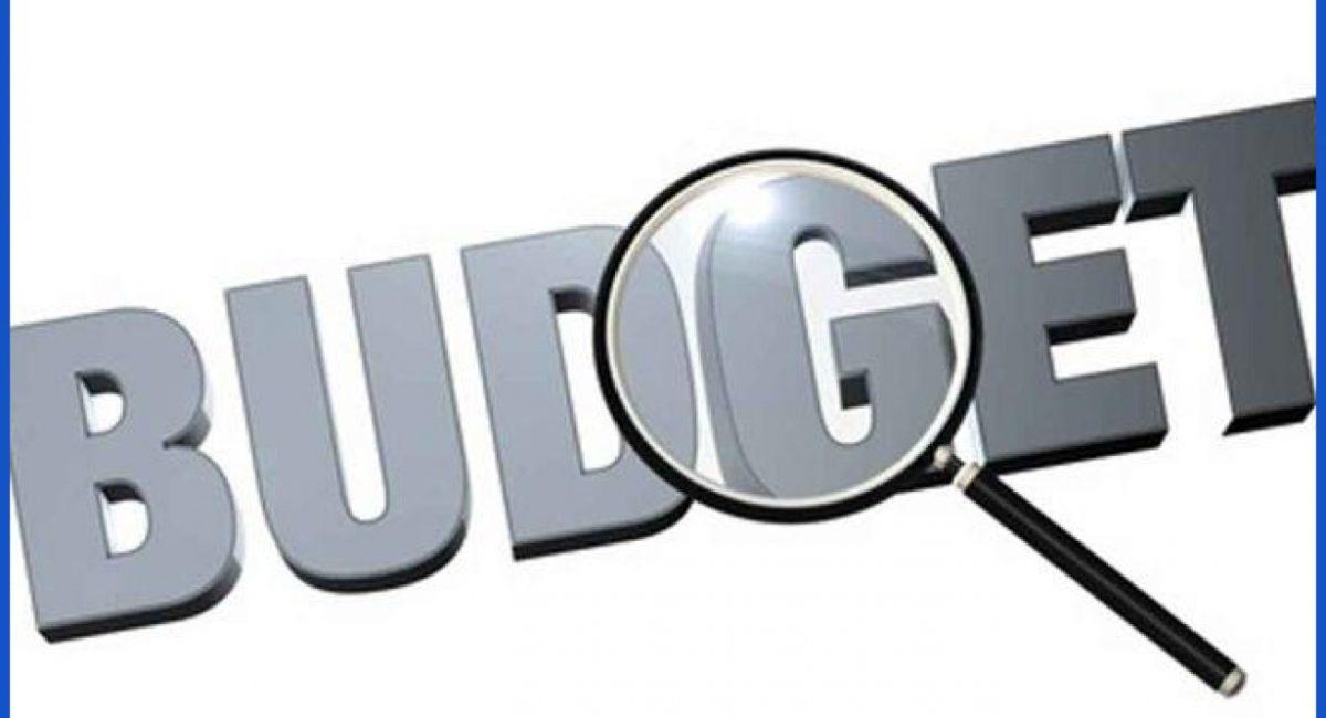 highlights of the interim Budget 2019-20